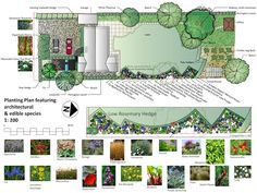 Pashley Manor Gardens Map Click for expanded version Garden