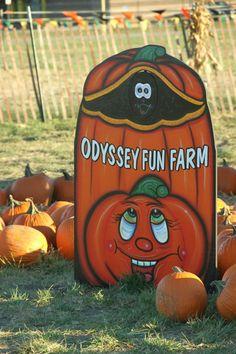 Odyssey Fun Farm in Tinley Park, IL