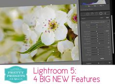 The New Lightroom 5's 4 Big Features | Pretty Presets for Lightroom