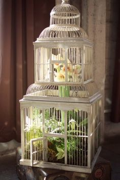 My mother used to put ferns in antique bird cages. She said it was the only thing they were good for. It looks stunning.