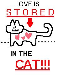 love is stored in the cat Gay Pride, Troy, Half Elf, My Sun And Stars, Thing 1, Wholesome Memes, Love You, My Love, Homestuck