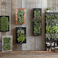 Copper Vertical Wall Planter