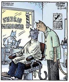 Funny cat cartoon - http://jokideo.com/