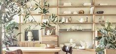 Apê de 48 m² ganha leveza com madeira clara e plantas (Reprodução)