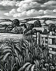 """Summer Fields, The Ebble Valley"" - Wood Engraving by Howard Phipps x 2 Woodcut Art, Linocut Prints, Munier, Illustration Art, Illustrations, Botanical Illustration, Etching Prints, Linoprint, Scratchboard"