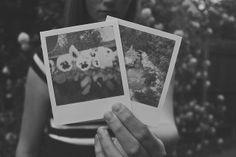 memories often lie