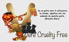 http://viverecrueltyfree.ning.com/page/home