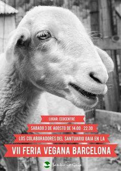Santuario Gaia, refugio de animales rescatados.