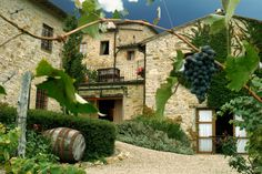 Booking.com: Il Casello Country House B, Greve, Italy (near Florence)