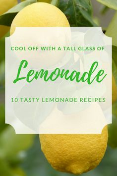 10 Tasty Lemonade Re