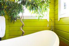 Vihreäksi maalattu hirsiseinä tuo ammeen upeat muodot esiin