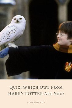 Take the quiz and discover which owl you are from Harry Potter.   book quiz | harry potter quiz | quizzes for book lovers