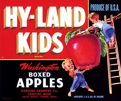 Hy-Land Kids Apples