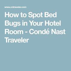How to Spot Bed Bugs in Your Hotel Room - Condé Nast Traveler