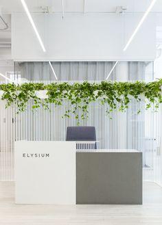 Corporate Office Design, Office Reception Design, Dental Office Design, Modern Office Design, Modern Interior Design, Modern Offices, Healthcare Design, Office Designs, Office Wall Design