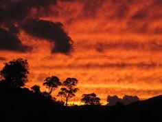 Cudgewa sunset