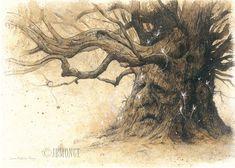 Oakshee - Le Chêne aux Fées