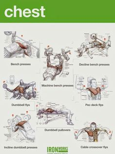 Chest Workout From Iron Works