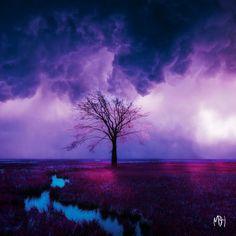The First Tree by MBHenriksen.deviantart.com on @deviantART