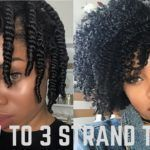 Cute Twist And Curl Shared By IG: TheOther_QueenB