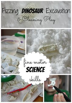 Fizzing Dinosaur Excavation And Cleaning Play Activity