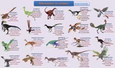 esquema-dinosaurios-no-avianos