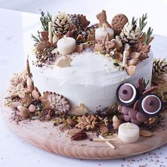#GBBO winner @frances_quinn created this whimsical woodland scene for our latest Style & Living #GetTheLook feature. Discover more cake decorating tips online now!