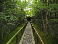 Some of the most beautiful and tranquil temples to visit on a rainy day in Kyoto, Japan  雨の日に訪れたい 風情漂う京都のお寺8選
