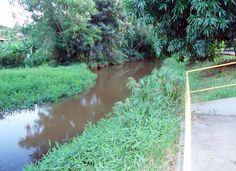 Rio Alegria, principal manancial de abastecimento de água na cidade em Medianeira. 08.03.12limpearioalegriaantes.jpg (1278×929)