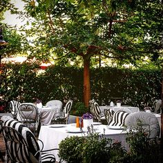 THE TWENTYONE RESTAURANT & BAR's  beautiful garden is ready to please you! Photo by @danaigiannakoudi Restaurant Names, Restaurant Bar, Number 21, Athens, Beautiful Gardens, Environment, Things To Come, Patio, Outdoor Decor