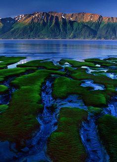 Cook Inlet mudflats, Alaska