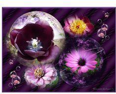 My pancreas flowers
