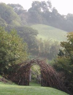 Heather Jansch, what a delightful doorway from one part of the garden to another