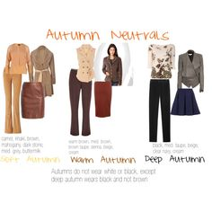 Autumn Neutrals by expressingyourtruth on Polyvore featuring Ted Baker, Rocha.John Rocha, Drome, Helmut Lang, 3.1 Phillip Lim, Windsmoor, Roberto Cavalli, Topshop, Dorothy Perkins and Retrò