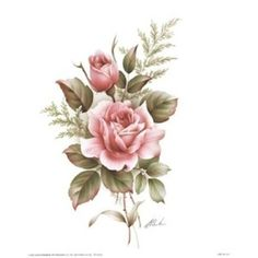 Rose Drawings In Pencil | Rose-Pencil-Drawings-Rose-Drawings-Drawing-Of-A-Rose-original.jpg