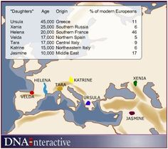 "A map image showing the origin points of the seven ""daughters of Eve"". Using mtDNA, researchers have traced European populations back to seven ""daughters of Eve."" For more information go to www.oxfordancestors.com. From http://www.dnalc.org/view/15612-Seven-daughters-of-Eve-origins-.html"