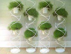 цветы комнатные композиции в интерьере