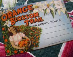 Vintage Florida postcard folder - Orange Blossom Trail - 1940s Florida souvenir postcards