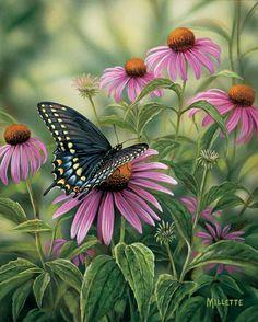 Пташий мир...весна-лето | Rosemary Millette.. Обсуждение на LiveInternet - Российский Сервис Онлайн-Дневников
