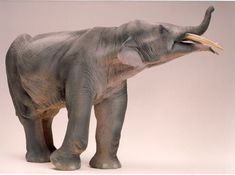 Reconstruction of Gomphotherium by Quagga