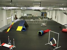 Charmant Indoor, Beginning Agility Course