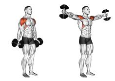 Hantel Scaption – New Ideas Dumbbell Scaption… – Fitnessabs Dumbbell Workout Routine, Best Dumbbell Exercises, Full Body Dumbbell Workout, Gym Workout Videos, Biceps Workout, Deltoid Workout, Workout Men, Kettlebell Training, Weight Training Workouts