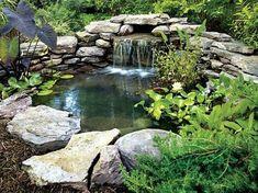 bassin de jardin cascade-végétation-nénuphars