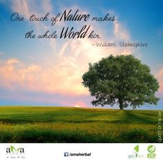 True! One touch of Nature makes the whole World kin.@WilliamS_Quotes #ecofriendly.https://www.facebook.com/amaherbal/photos/a.283777945111081.1073741829.274434279378781/517974781691395/?type=1&theater…