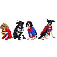 Get great deals on superhero costumes for kids and adults at Official Superhero Costumes. Find costumes for Batman, Wonder Woman, Black Panther, Catwoman and more! Superhero Halloween Costumes, Adult Halloween, Adult Costumes, Witch Doctor Costume, Super Hero Costumes, Catwoman, Black Panther, Snuggles, Sydney