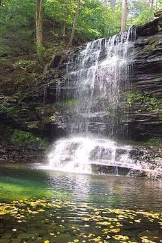 Hiking: Falls Trail at Ricketts Glen State Park (PA)
