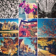 #mystuttgart #0711 #bawu #sonbahar #gezgindirgezeninadi #stuttgart #almanya #rengarenk #renkcumbusu #autumn #agaclar #yapraklar #reise #travel #seyahat #gezi