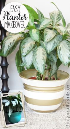 DIY Planter makeover ...  Plus tips for taping on a curved surface