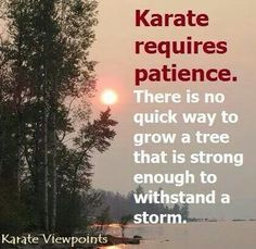Karate requires patience. #martialartsquotes #martiaartsquotesinspiration http://www.blackbeltplus.com.au/                                                                                                                                                      More