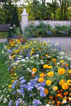 Mixed flower border at Chateau Malmaison #Mixed flowers!  That's what I my garden to be!!  Beautiful!!